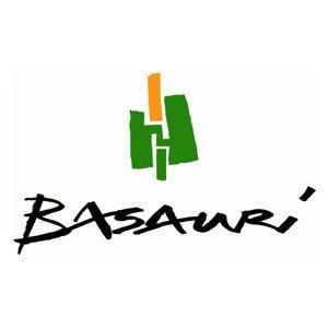 ayuntamiento basauri